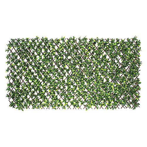 Priva Hedge Gardenia Leaf Expandable Willow Trellis