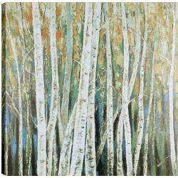 Art Maison Canada Forêt de bouleaux de 36 x 36, Art mur de toile imprimé, prêt à accrocher