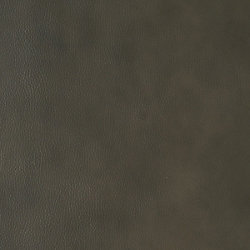 Formica 48 inch x 96 inch Recycled Leather Veneer Sheet in Antique Grey  Walrus
