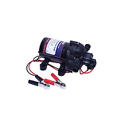 EccoFlo Diaphragm 12V Pump & Strainer