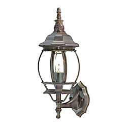 Acclaim Chateau Collection Wall-Mount 1-Light Outdoor Burled Walnut Light Fixture