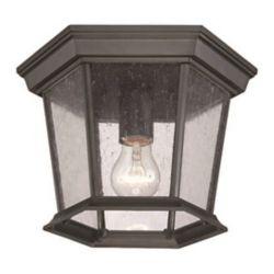 Acclaim Plafonnier extérieur à une ampoule en fini noir mat de la Collection Dover
