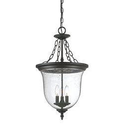 Acclaim Belle collection lanterne suspendue 3-luminaire extérieur en noir mat
