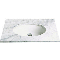 Carlyn Oval Biscuit Vitreous China Undermount Lavatory with Overflow