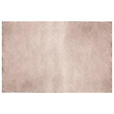 Carpette d'intérieur en fausse fourrure ultra douce 4 pi x 6 pi, couleur taupe