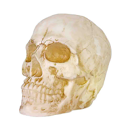 20.5 inch LED Skull with Timer