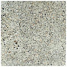Venecia Dieciocho 17-3/4-inch x 17-3/4-inch Porcelain Floor and Wall Tile (11.25 sq. ft. / case)