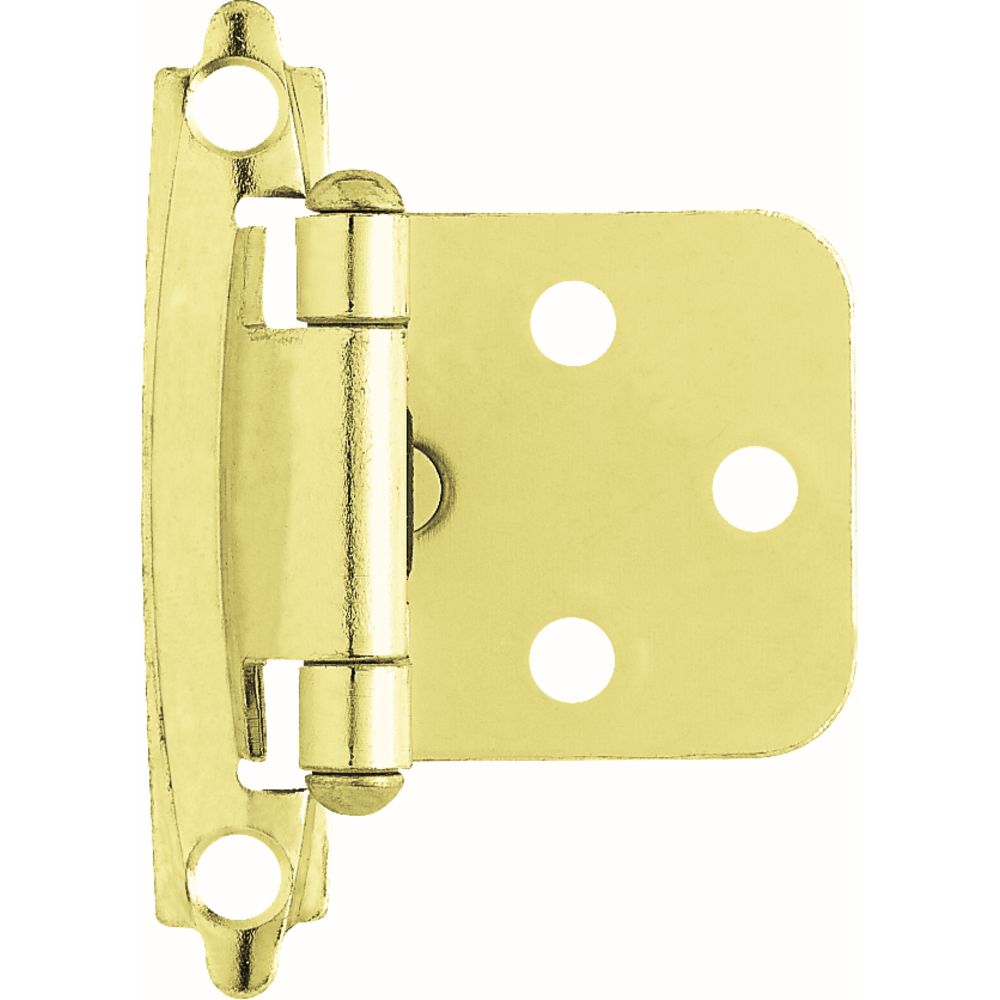 Liberty Polished Brass Self-Closing Overlay Hinge (1-Pair)