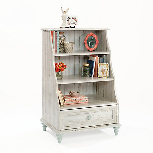 Bookcases And Bookshelves