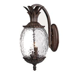 Acclaim LANAI Downward Wall-Mount 2-Light Outdoor Fixture in Black Coral