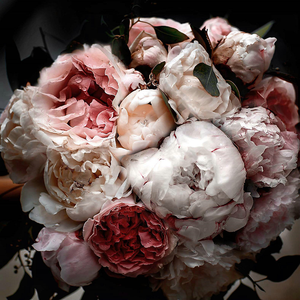 31.5X31.5 II Floral verre trempé avec feuille Wall Art