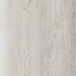 Sample - Frosted Oak Luxury Vinyl Flooring, 5-inch x 6-inch