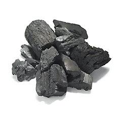 Charcoal - 8.8 lb. Bag