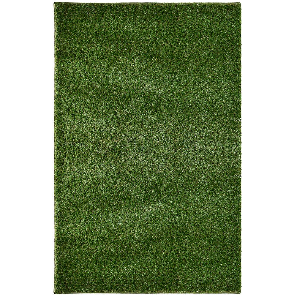 Tapis rectangulaire, 6 pi x 23 pi, gazon, vert