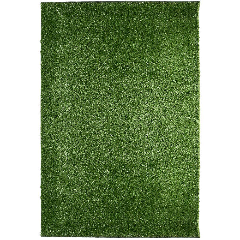 Tapis rectangulaire, 6 pi x 15 pi, gazon Deluxe, vert