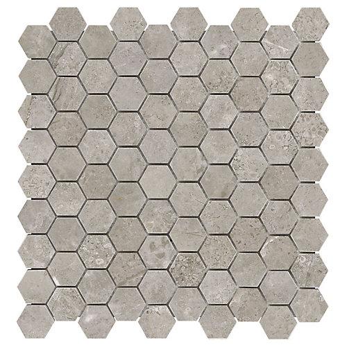 Carreaux de mosaïque Salo, 1,25 po x 1,25 po, marbre adouci hexagonale (10 pi2/boîte)