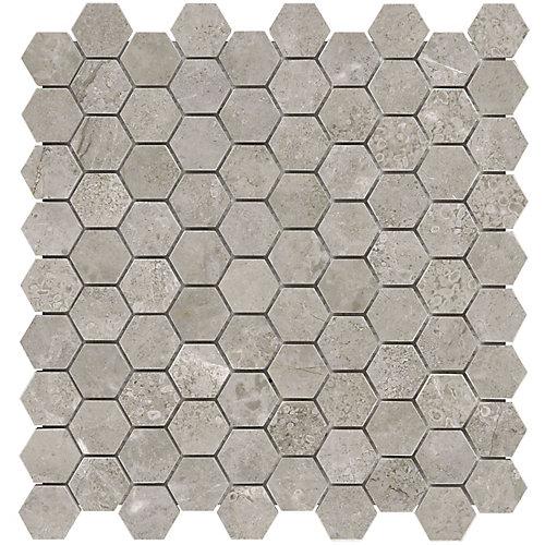 Carreaux de mosaïque Salo, 1,25 po x 1,25 po, marbre poli hexagonale (10 pi2/boîte)