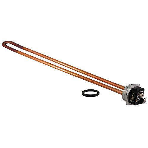 Rheem 240V/3.8kW Resistored Element