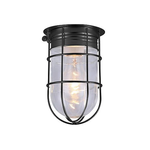 Canarm 1-light matte black outdoor ceiling light with clear glass and metal cage