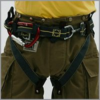 Class II Spider Harness™ System_1