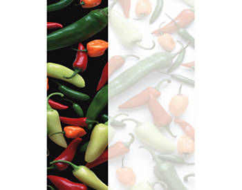 Peppers Insert Paper, 8.5X11