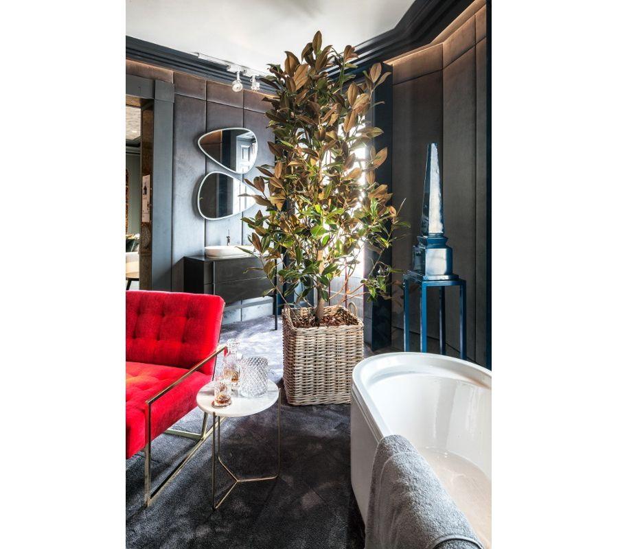 Une salle de bains chic décorée d'une grande et belle plante verte au milieu de la pièce