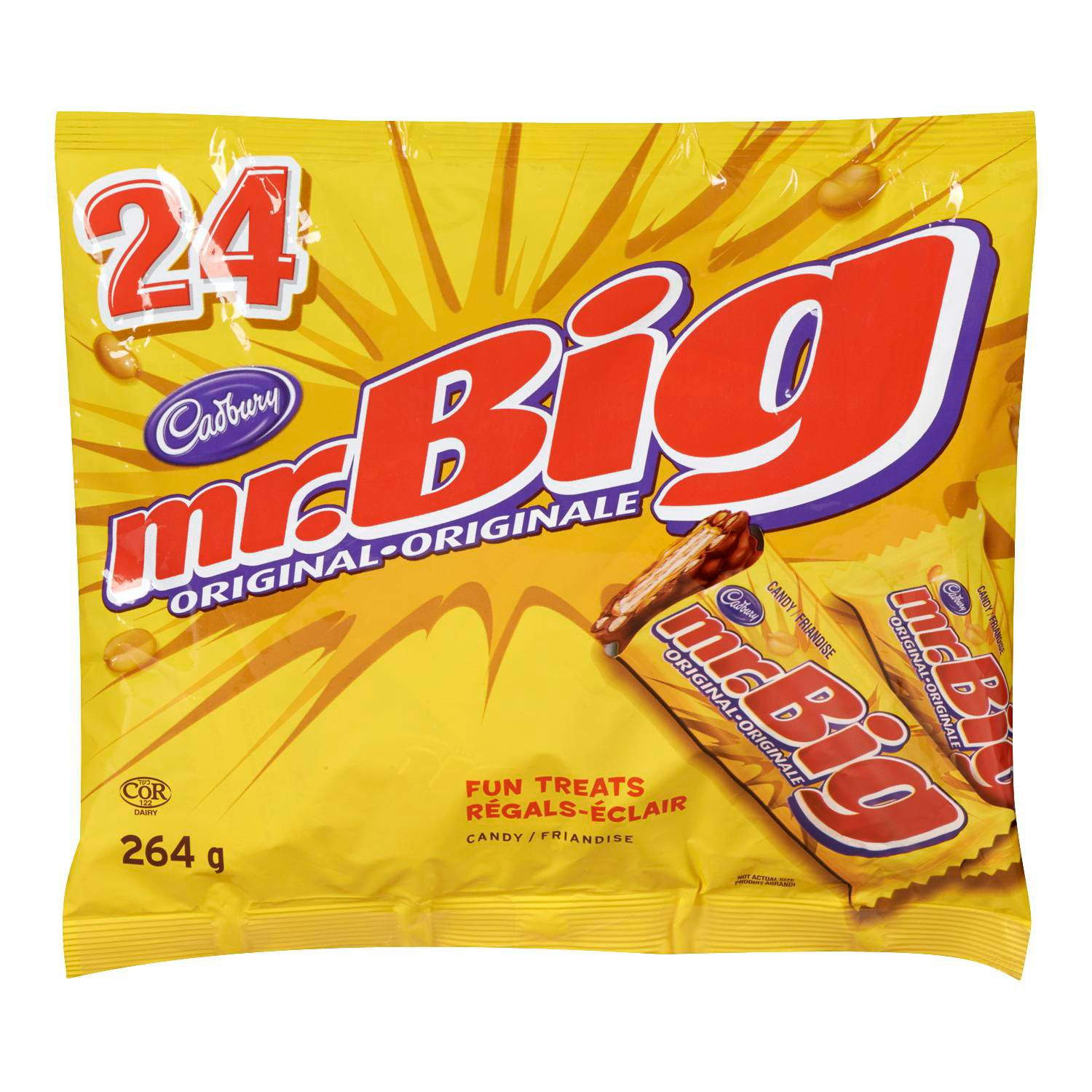 MR BIG 24CT FUN TREATS 264G