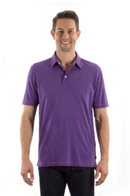 Image for Izod Men's Regular Fit Short Sleeve Jersey Polo from PVH Corporate Outfitters