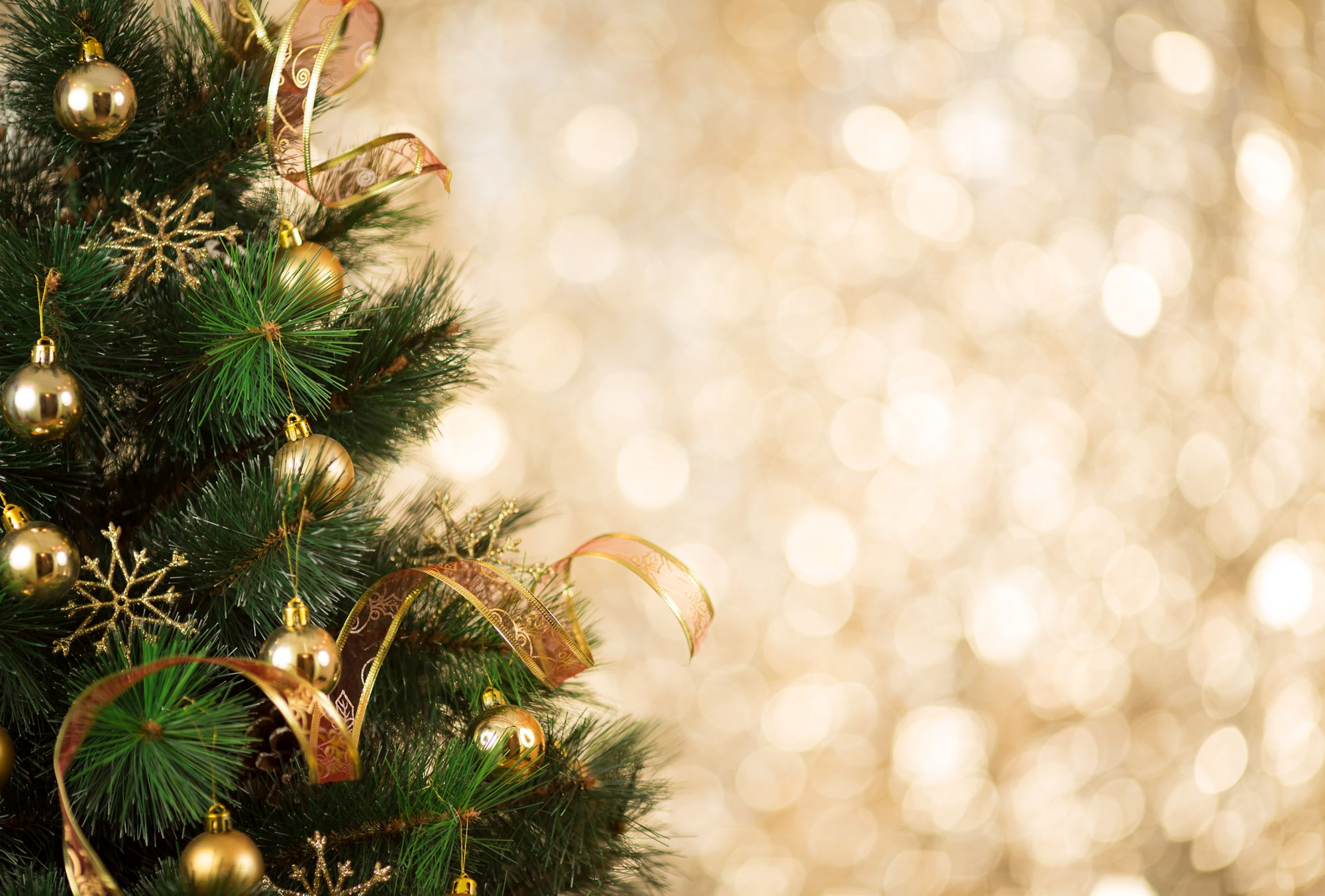 Close-up view of a Christmas tree trimmed with gold and set against a shimmering gold background