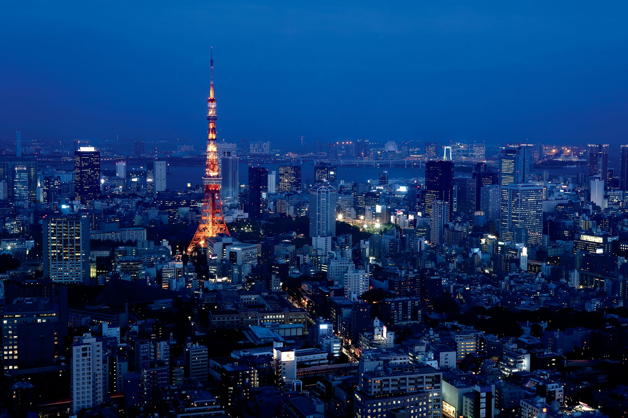 Evening view of the Tokyo skyline, which includes buildings, water and the Tokyo Tower