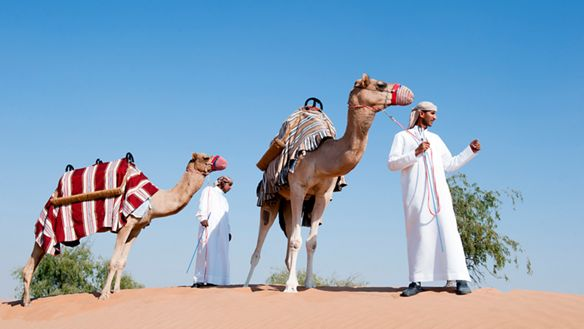 Two men in traditional Bedouin attire lead camels through the desert