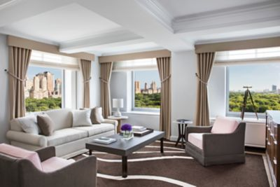 Luxury Hotels in NYC | The Ritz-Carlton New York, Central Park