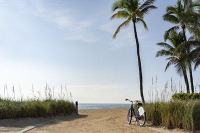 Miami Florida 5 Star Hotel | The Ritz-Carlton Bal Harbour, Miami