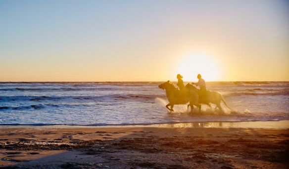 A man and woman ride horses on the beach