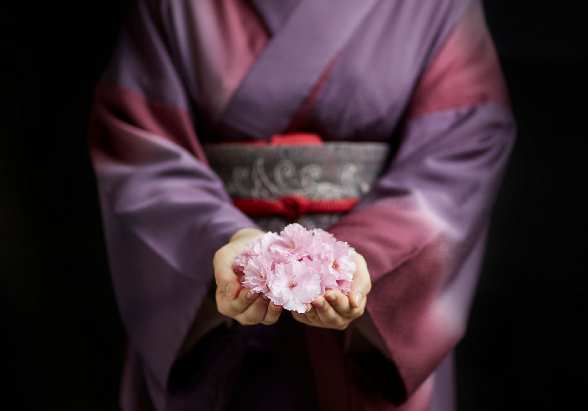 Woman wears a purple ombre kimono with her hands cupped in front of her holding pink blossoms