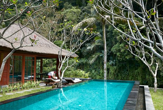 Rectangular pool and villa building with a person on the patio and a surrounding landscape of rainforest