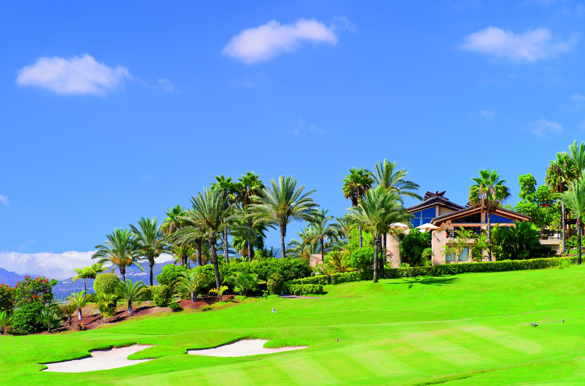 A building and palm trees overlook a lush golf course