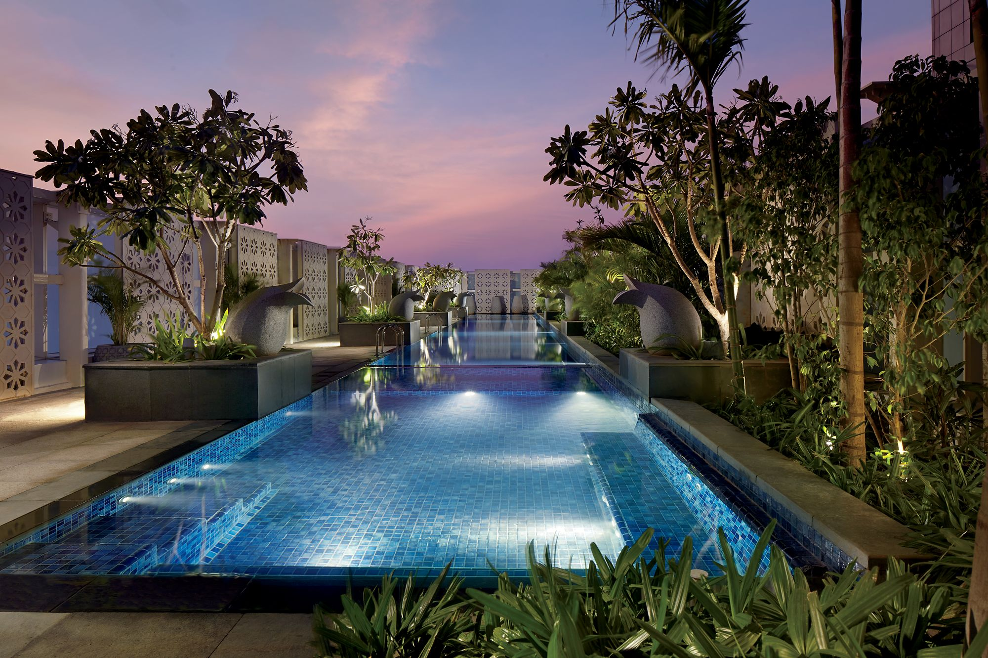Long, rectangular pool surrounded by lush plantings as a pink and purple sunset settles over the sky