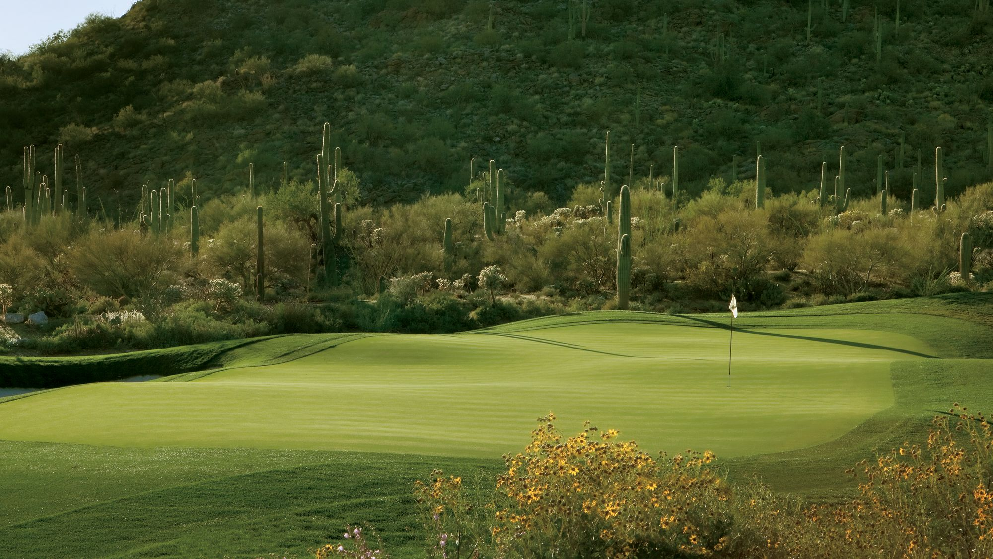 A golf course overlooked by cacti and mountains