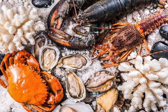 Fresh lobster, crab and oysters