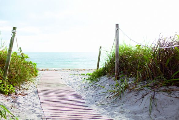 A wood-plank path leads to the ocean