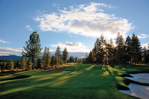 A golf course surrounded by pine trees