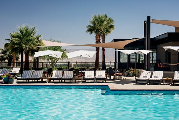 Pool overlooked by palm trees and lounge chairs