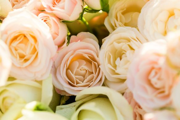 Close-up of a floral arrangement with roses