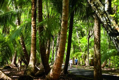 Rockefeller Trail walk