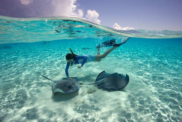 Girl snorkeling in Stingray City, Grand Cayman Islands, Grand Cayman