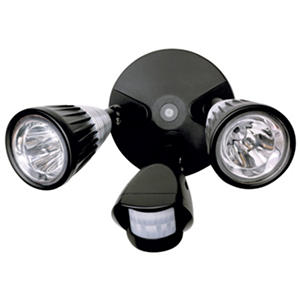 Ge led motion security light samsclub auctions ge led motion security light aloadofball Choice Image