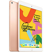 "Apple iPad 10.2"" 7th Generation 128GB with Wi-Fi (Gold)"