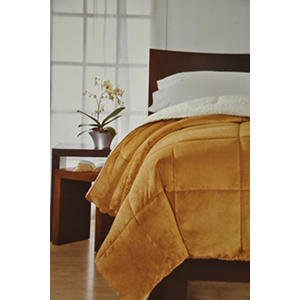 London Fog Comforter King Gold Samsclub Com Auctions