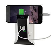(Free Shipping)Sharper Image Visual Charge USB Wall Plate Charger
